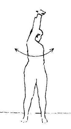 Гимнастика «Белояр»: особенности и преимущества лучших комплексов упражнений